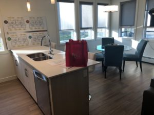 Show Homes Kitchen Cleaning