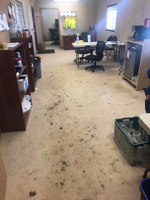 Cleaning Commercial Building